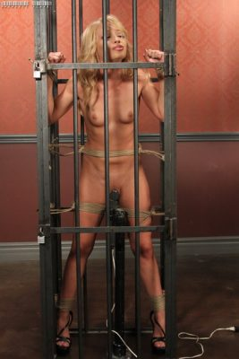 Perfect Slave - Caged Emotions - Alyssa Branch