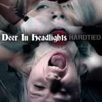 Hardtied – Oct 11, 2017: Deer In Headlights | Bambi Belle