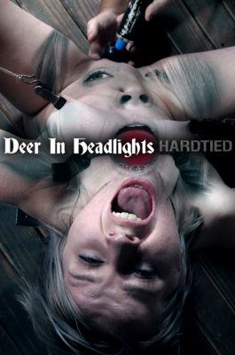 Hardtied - Oct 11, 2017: Deer In Headlights | Bambi Belle