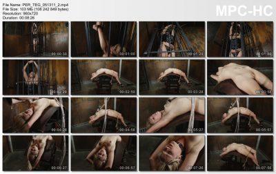 Perfect Slave - Captive Audience - Tegan Summers