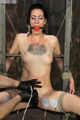 DungeonCorp - Casting Couch - Broken - Holly Roger