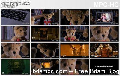 Restrained Elegance - Bondage Bears Viral Video