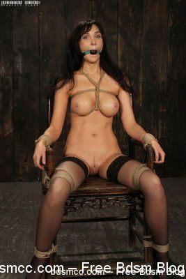 Perfect Slave - A Standing Struggle - Diana Prince