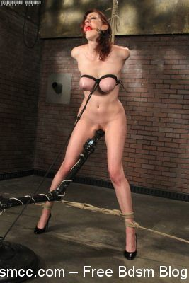 Perfect Slave - Hooray For Holly Wood! - Holly Wood
