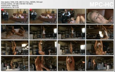 FantasyDamsels - The Incident - Cherie Deville