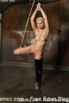 PerfectSlave - Pleasure Struggle - Anikka Albrite
